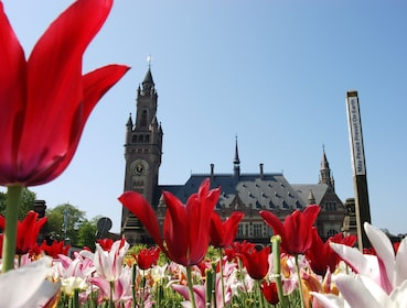 View of Peace Palace over red and pink tulips