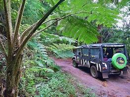 Safari West Tour