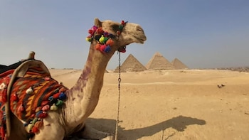Day Tour To The Pyramids, Egyptian Museum, Citadel and Lunch