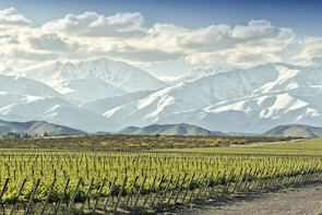 Uco Valley Full-Day Wine Tasting Tour with 5 Course Lunch