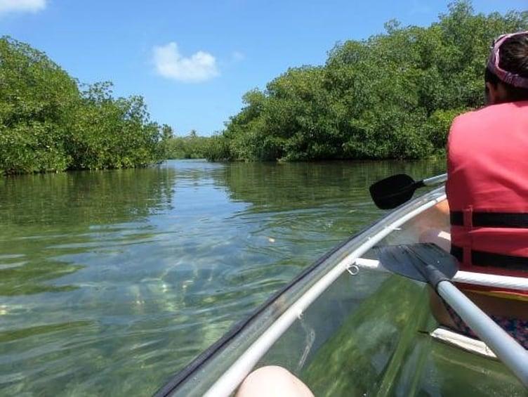 Show item 3 of 5. Transparent Kayak Tour