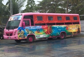 Island round tour in Chiva or Bus