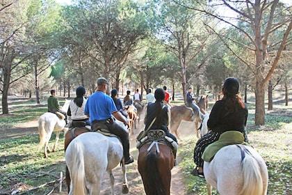 Tour group on a horseback ride in the nature reserve of Jerez de la Frontera