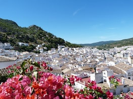 Private Tour to The White Towns of Andalusia from Seville