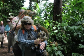3-Day Private Wildlife Adventure In Cat Ba National Park