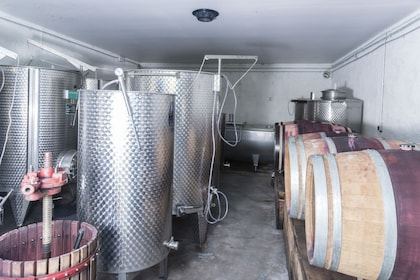 Organic winery in Languedoc