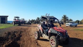 Half Day Quad bike Safari Tour to Lara Bay-Akamas in Paphos