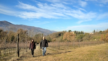 Hike and Chianti Wine