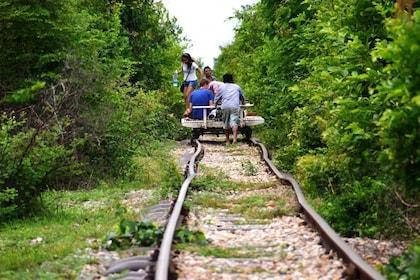 bamboo-train1.jpg