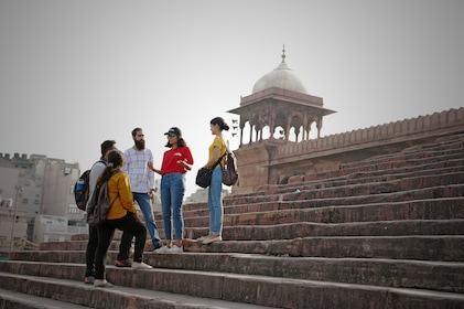 Tour group standing with guide on steps in Delhi