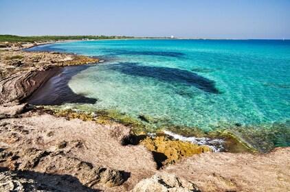 Rocky beach of Punta della Suina