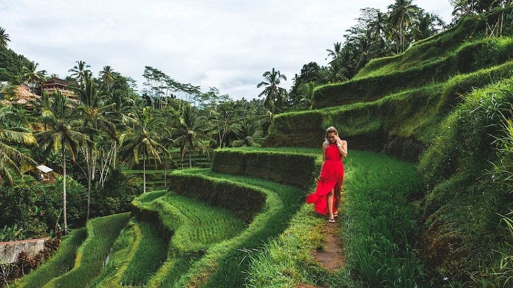 Show item 1 of 8. Bali Sensational: Ubud and Tanah Lot Temple Tour