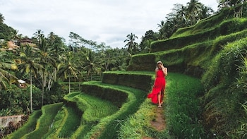 Bali Sensational: Ubud and Tanah Lot Temple Tour