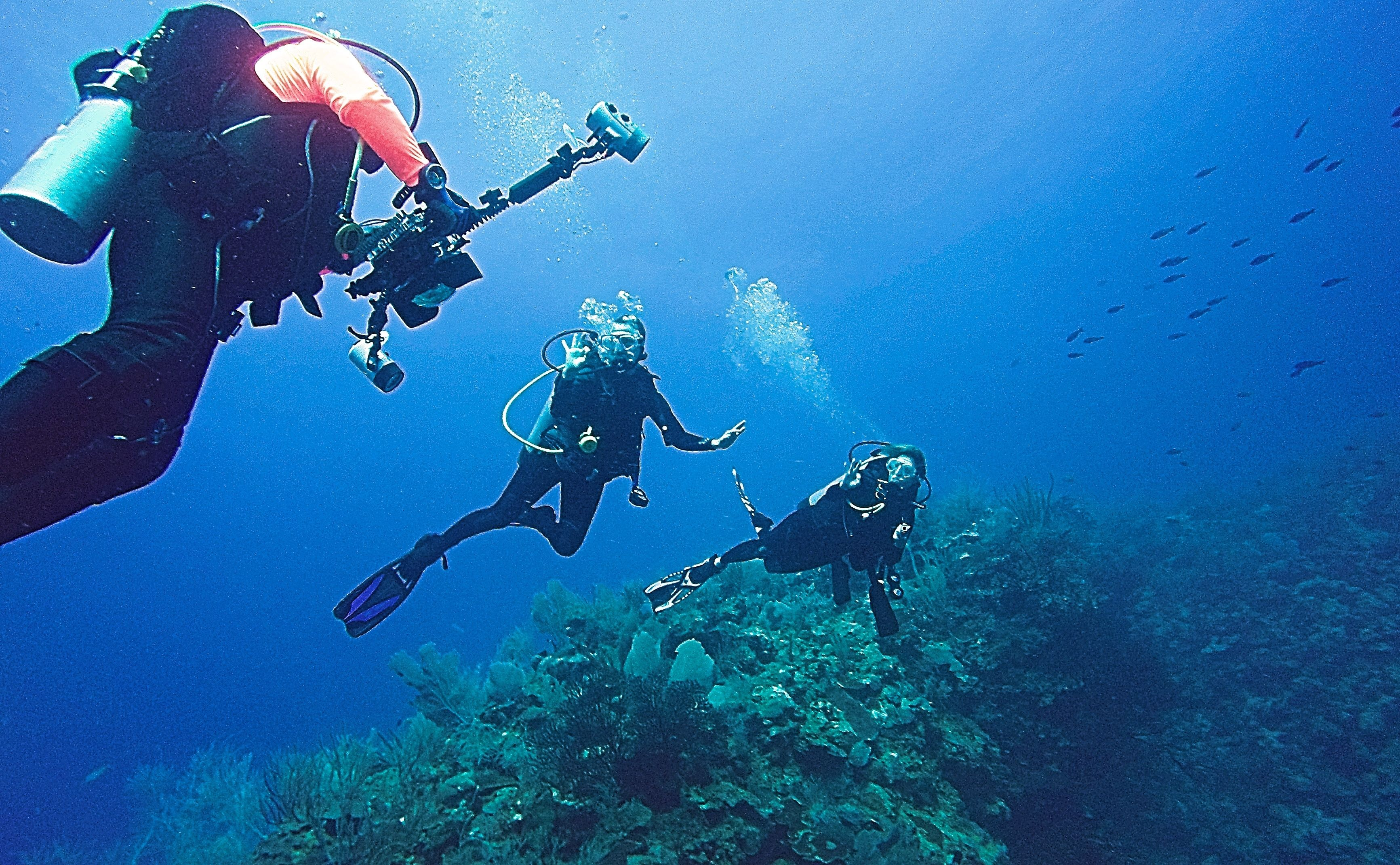 2-Tank Guided Shore Dive for Certified Divers-all levels