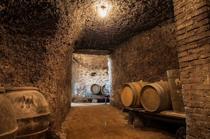 Small Group Frascati Wine Experience with Lunch by Minivan