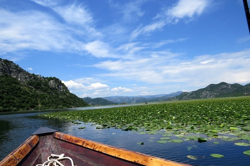 Show item 2 of 6. Private Excursion to National Park Skadar Lake
