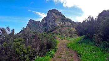 Larano - Full Day Mountain/Cliff Walk in Madeira