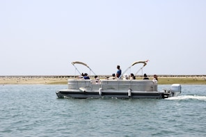 2-hour Bird Watching Boat Trip in Ria Formosa from Faro
