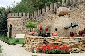 GROUP - Milestii Mici Winery with Tasting