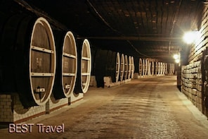 Chisinau Car City Tour and Milestii Mici winery - Group Exc.