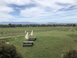 Private Mornington Peninsula Winery Tour including lunch