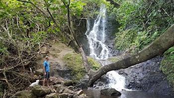 Koolau Waterfall Hike