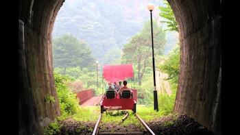 (Gratis meal) Nami Island+Petite France+Gangchon Rail Bike