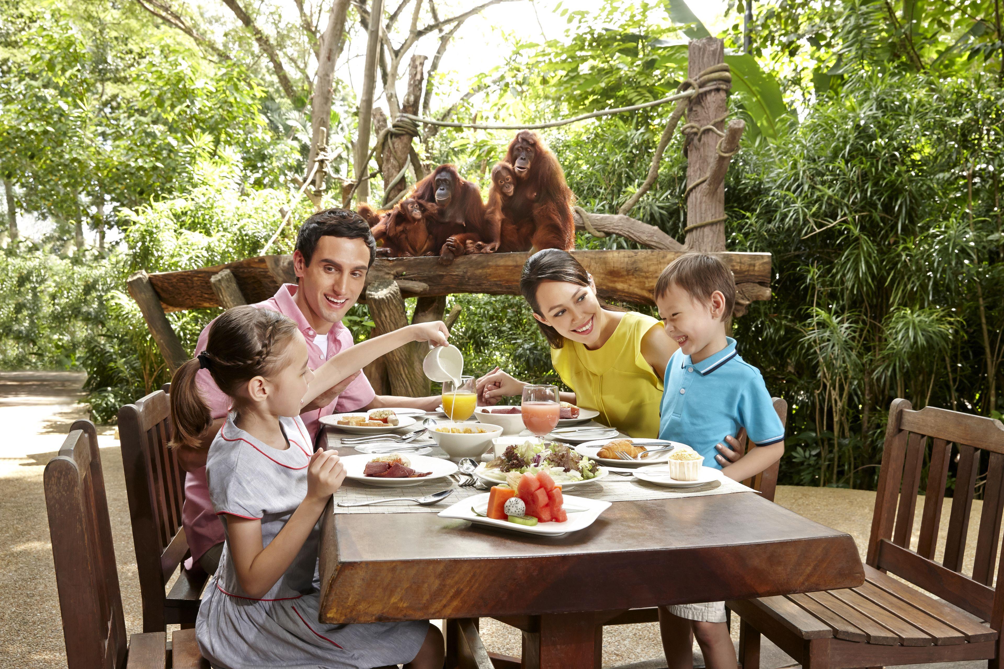 Singapore Zoo & 1-Way Transfer with Jungle Breakfast Option