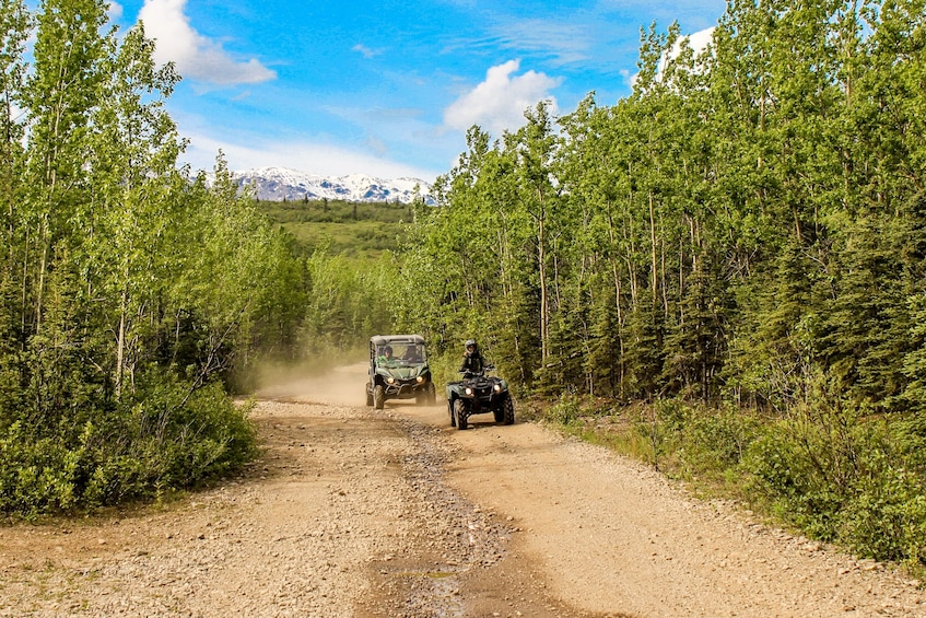 Show item 1 of 7. Denali Wilderness ATV Adventure