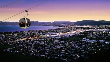3-Day Wellington to Auckland Tour