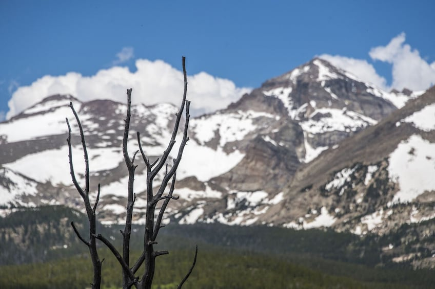 Show item 3 of 8. Hiking in Rocky Mountain National Park