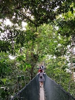 DAY TOUR TO KINABALU PARK AND PORING HOT SPRING