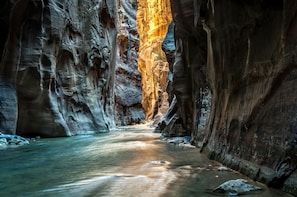 Zion National Park Small Group Day Tour