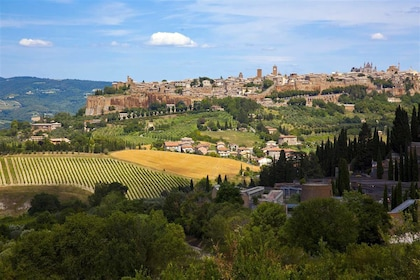 Fields and hilltop city of Orvieto, Italy