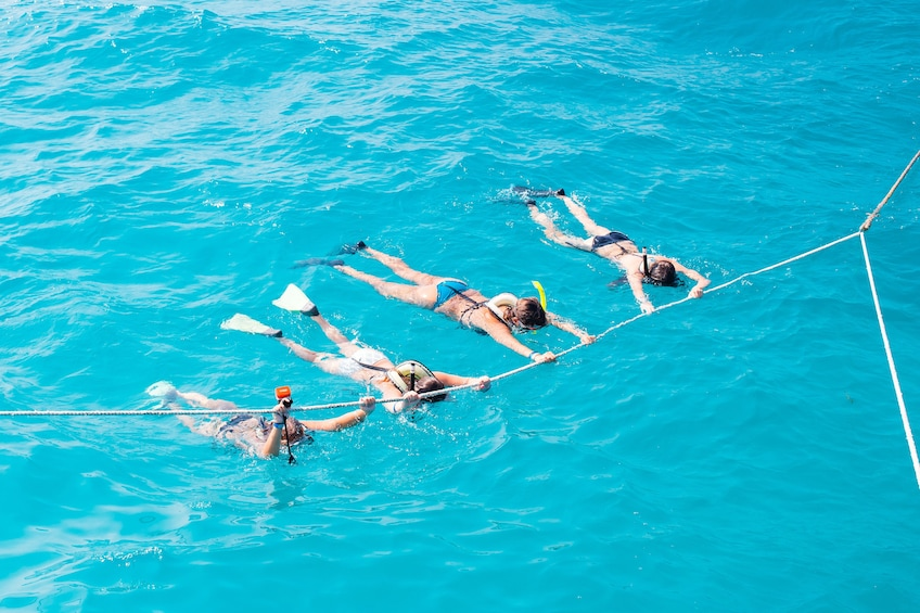 Show item 5 of 10. Four snorkelers hold onto rope