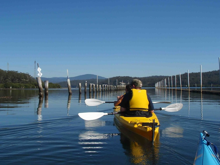 Show item 4 of 4. Oyster Tasting Kayak Tour