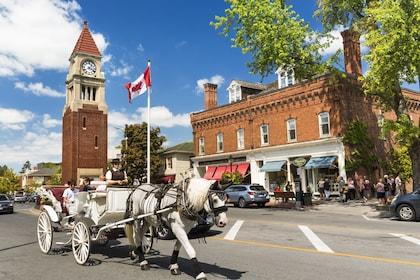 Toronto to Niagara Falls Day Tour w/ Hornblower Cruise