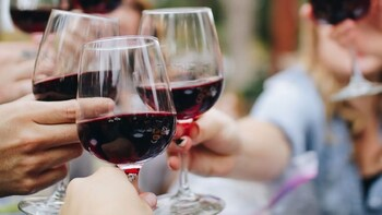 Porto Baixa Wine Tasting Experience