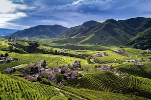 From Venice: Prosecco Country Wine & Food Private Tour