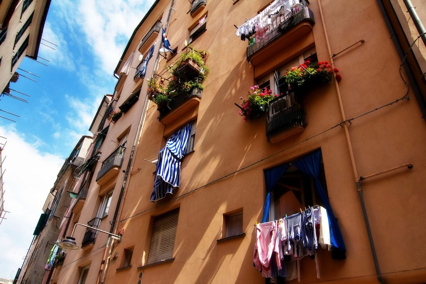 Show item 5 of 5. Highlights of Genoa walking tour with a local guide