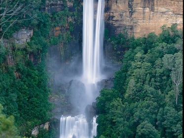fitzroy falls.jpeg