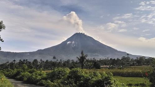 Mt. Sinabung.jpg
