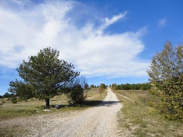 Bike Eagle's path 2.JPG