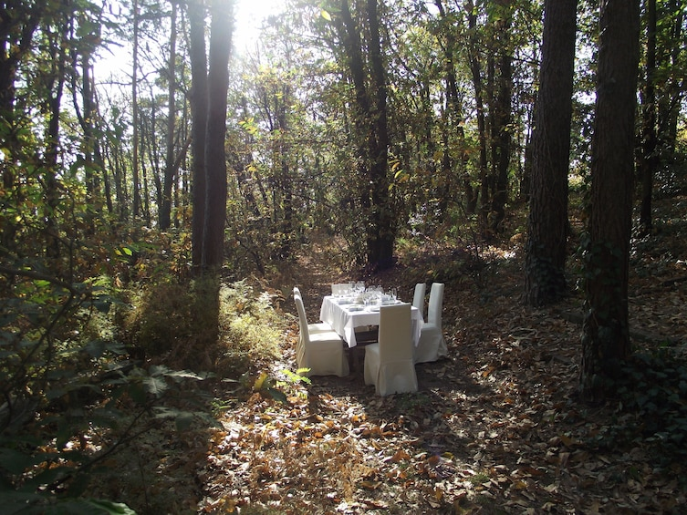 Show item 1 of 8. Cooking class in the woods! 1h from Milan