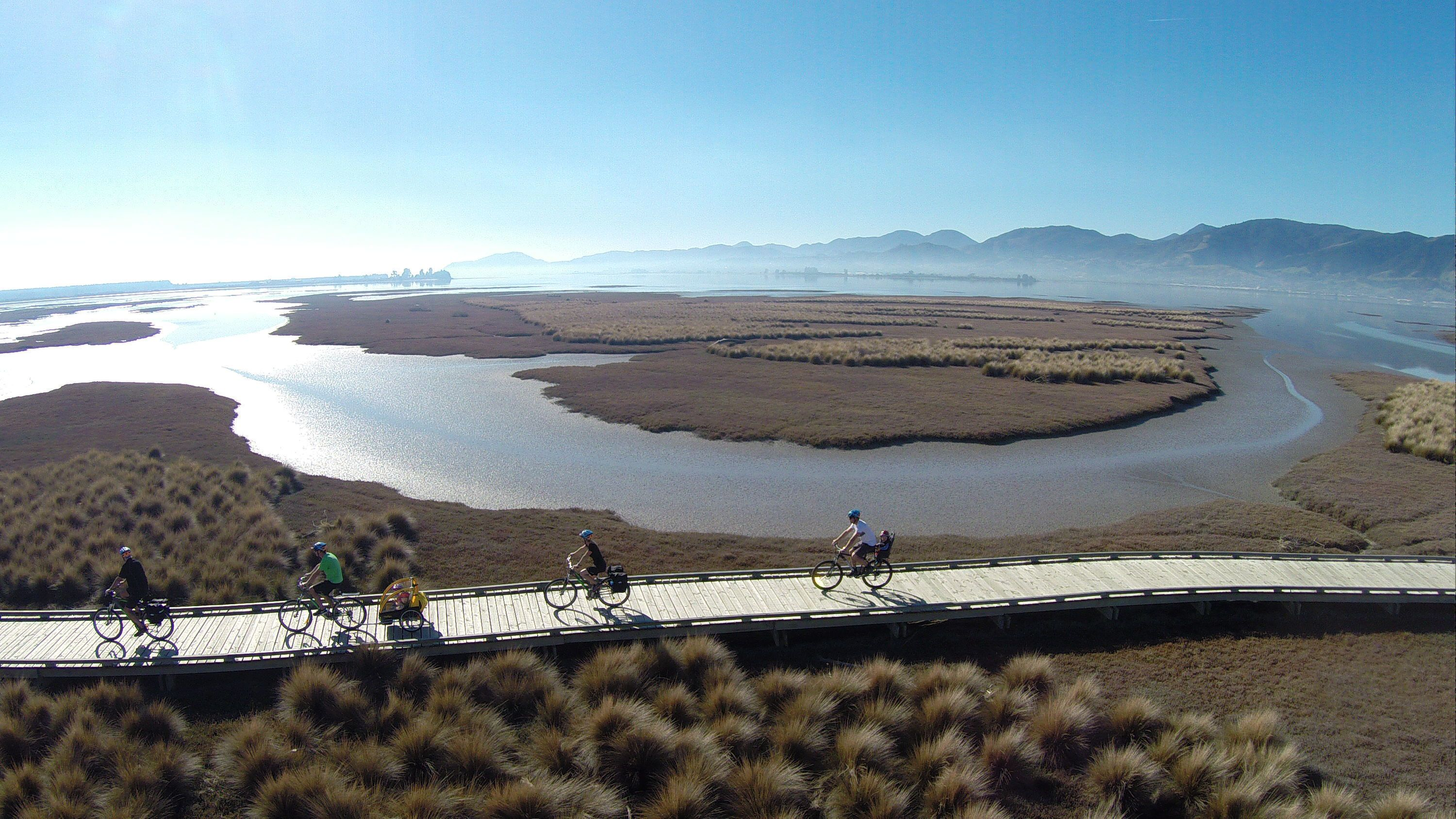 Nelson to Mapua One Day Cycle Adventure