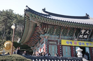 (Private) Busan Perfect Day Tour, Ocean Cable Car included