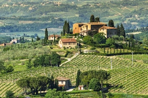Private tour: Chianti area including wine tasting and lunch