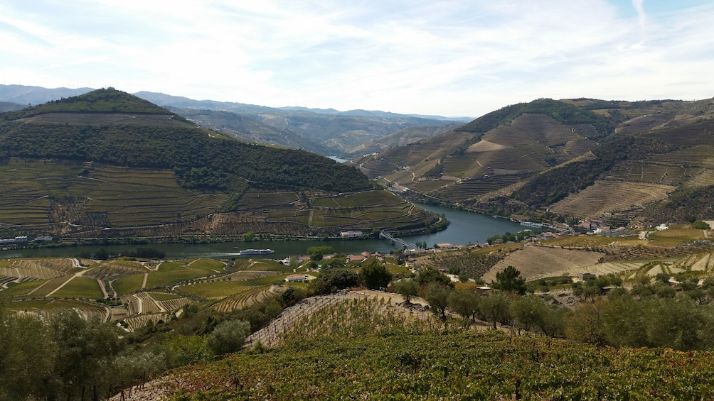 Show item 2 of 10. Douro Valley Tour - Wine Tasting, Lunch & River Cruise