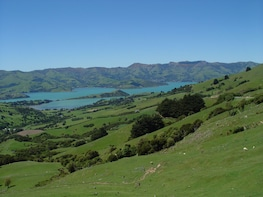 Private Tour:Akaroa Day Tour including Cruise & Alpaca Farm