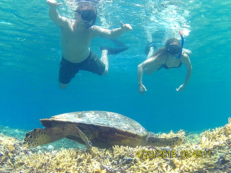 Show item 2 of 5. 3 Gili Snorkeling Tour ( 3 Island Visit in A Day )